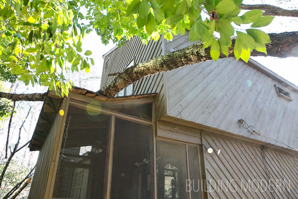 tree on house minor roof damage